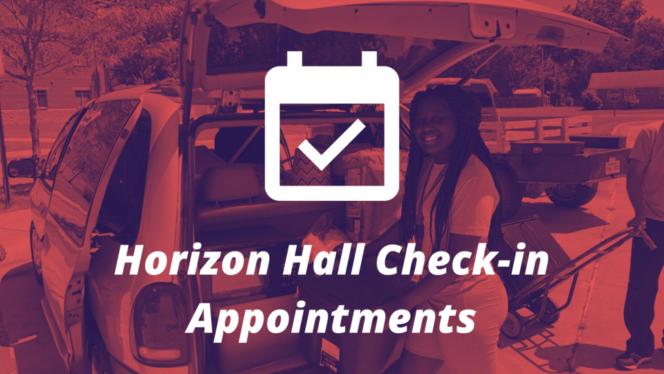 Horizon check-in appointments